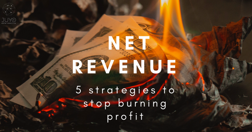 Net Revenue - 5 strategies to stop burning profit - New article on HSDS Blog